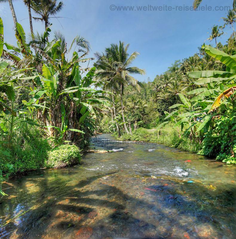 Kleiner Fluss zum Rafting im östlichen Zentrum von Bali