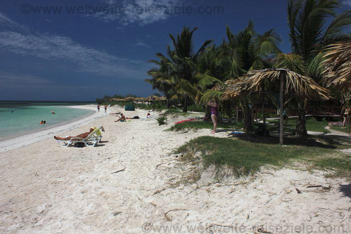 Weisser Sandstrand mit Palmen in Kuba, Cayo Levisa