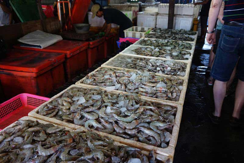 Garnelen auf Eis, im Fischmarkt von Kendogan, Bali