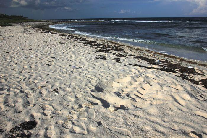 Spuren von einer Schildkröte am Strand, Kuba