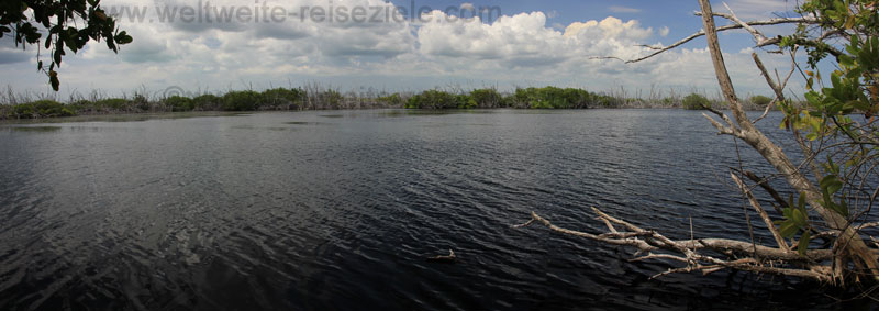 Lagune mit Krokodielen
