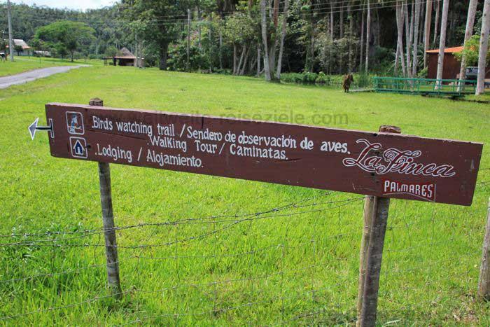 Finca mit der Möglichkeit zum Wandern in Viñales, Kuba