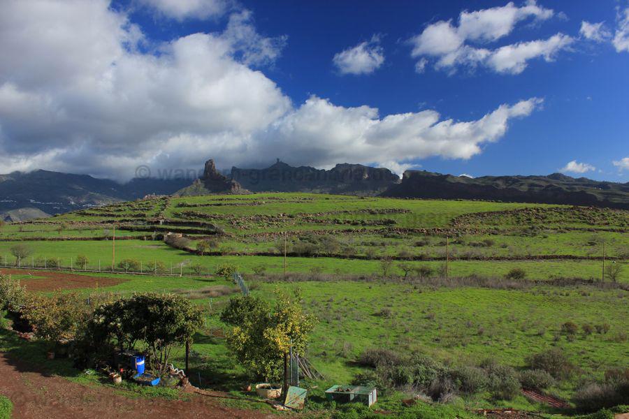 Acusa Verde auf Gran Canaria im Zentrum