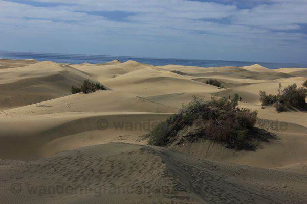 Urlaub an den Sanddühnen von Afrika