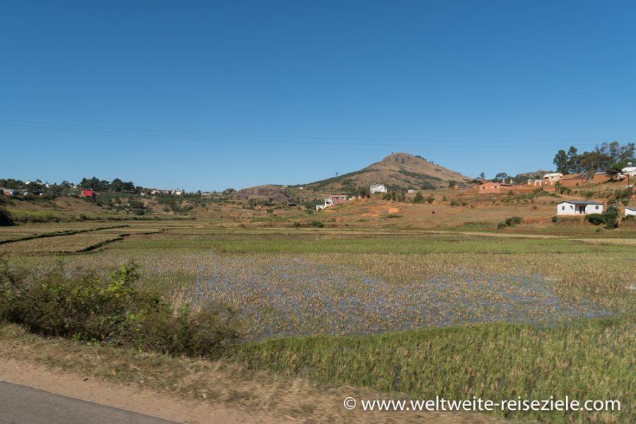 Madagaskar Landschaft, Reisfeld mit Wasser, östlich Antananarivo