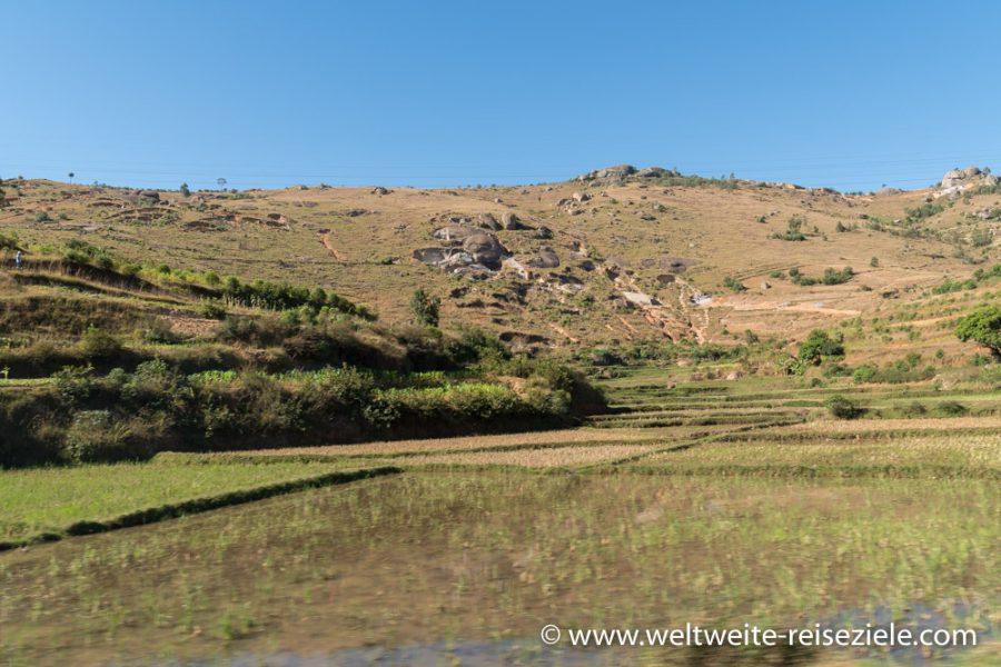Reisfelder, Landschaft zwischen Antananarivo und dem Peyrieras Park, Madagaskar