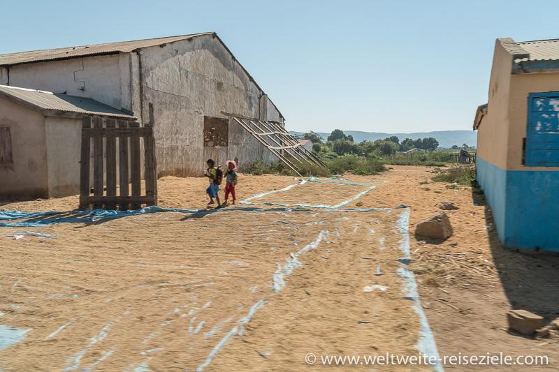 Reis trocknet auf Folien vor Häusern an der Strasse, Madagaskar