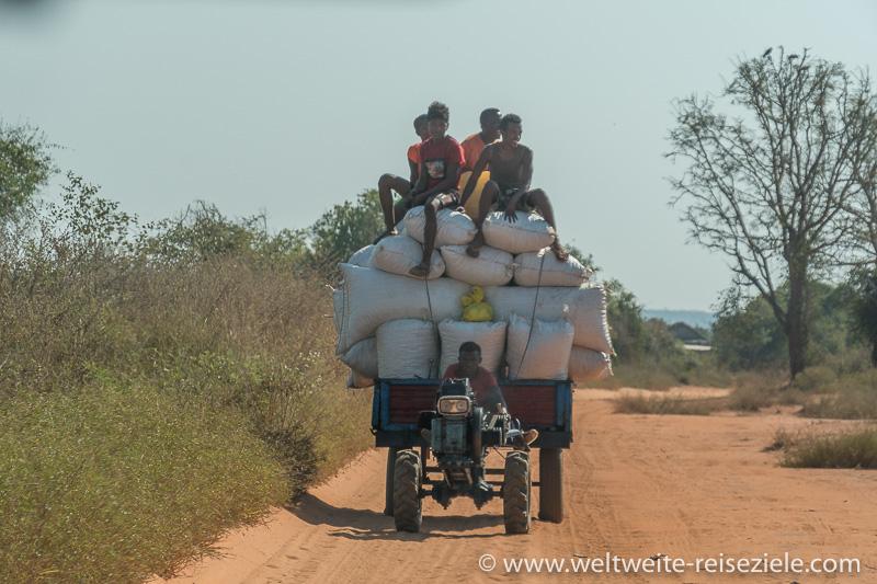 Schwer beladener Minitraktor mit Erdnüssen, Strasse Morondava nach Belo Sur Tsiribihina