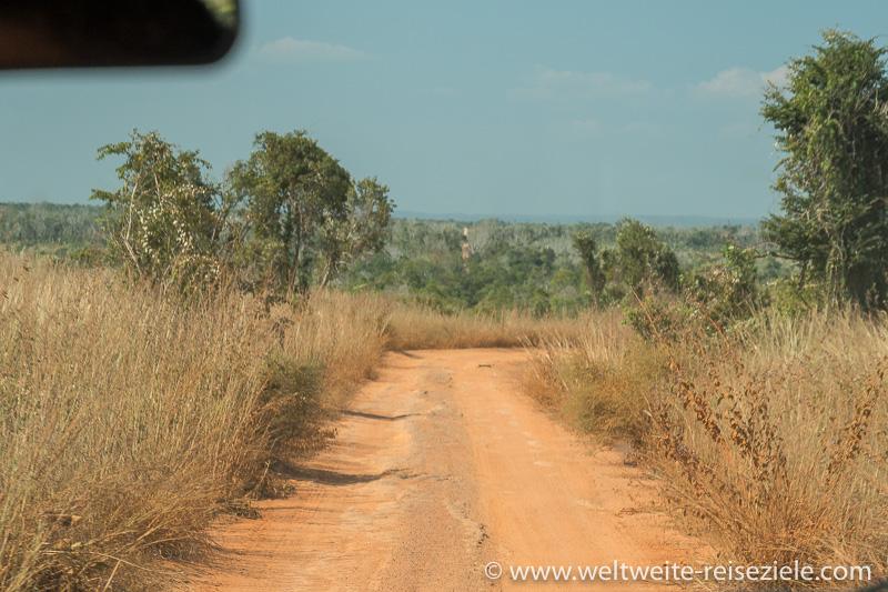 Rotbraune Staubstrasse von Belo Sur Tsiribihina nach Bekopaka