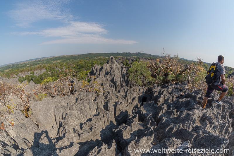 Messerscharfe Kalksteinfelsen, Nationalpark Tsingy de Bemaraha
