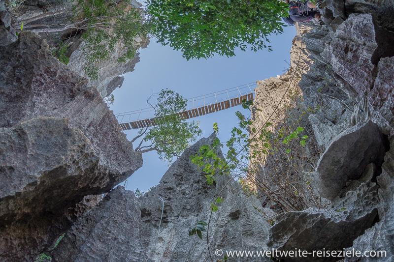 Klettersteig und Hängebrücke, Nationalpark Tsingy de Bemaraha