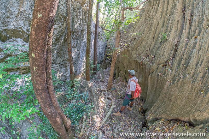 Wanderweg durch Kalksteinfelsen, Madagaskar Tsingy