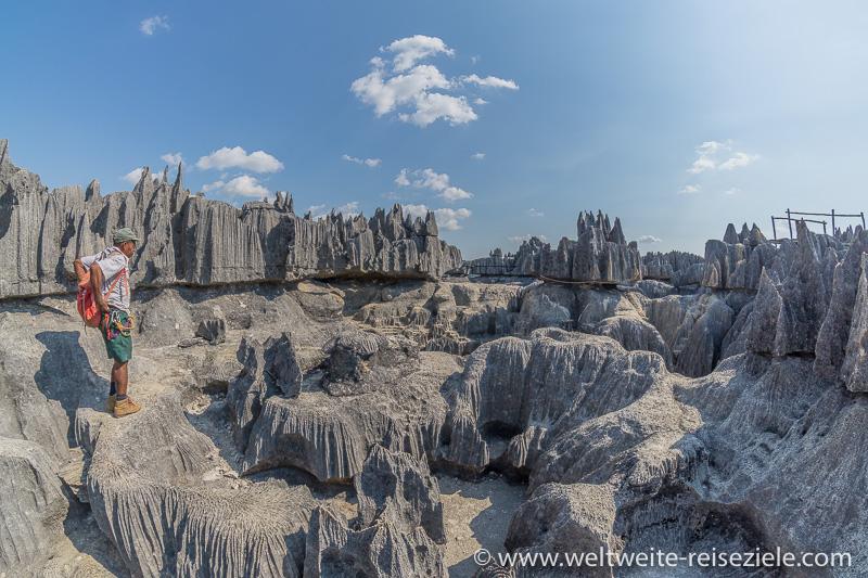 Bizarre Kalsteinfelsen am Tsingy de Bemaraha