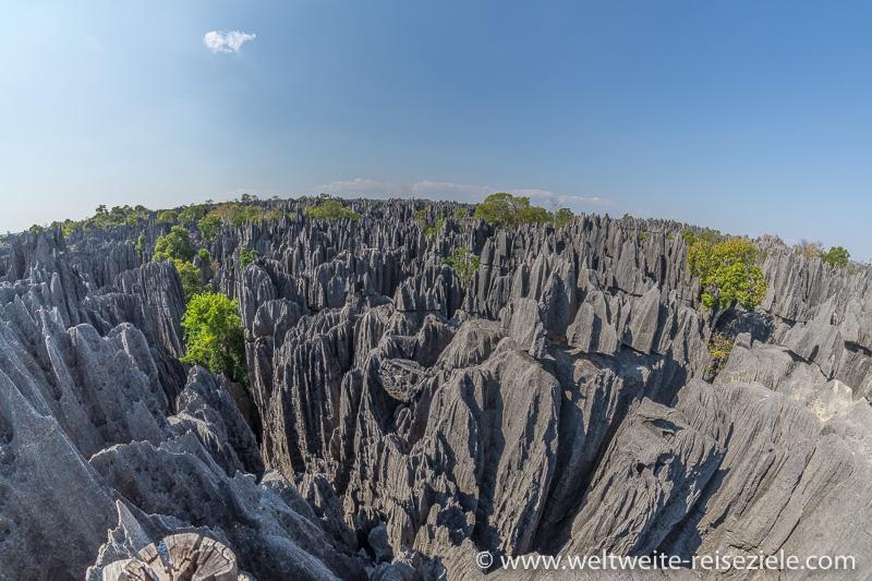 Von der Erosion bearbeitete, messerscharfe, Kalksteinfelsen am Tsingy de Bemaraha
