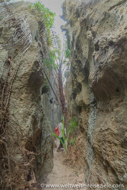 Labyrinth aus schmalen Gänge beim Petit Tsingy, Nationalpark Tsingy de Bemaraha