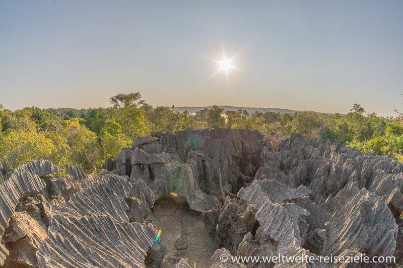 Ausblick über die Kalkstein Nadeln und die Lagune beim Petit Tsingy de Bemaraha