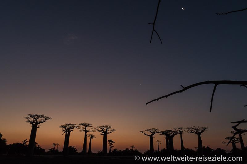 Es wird dunkel an Baobab Allee von Morondava