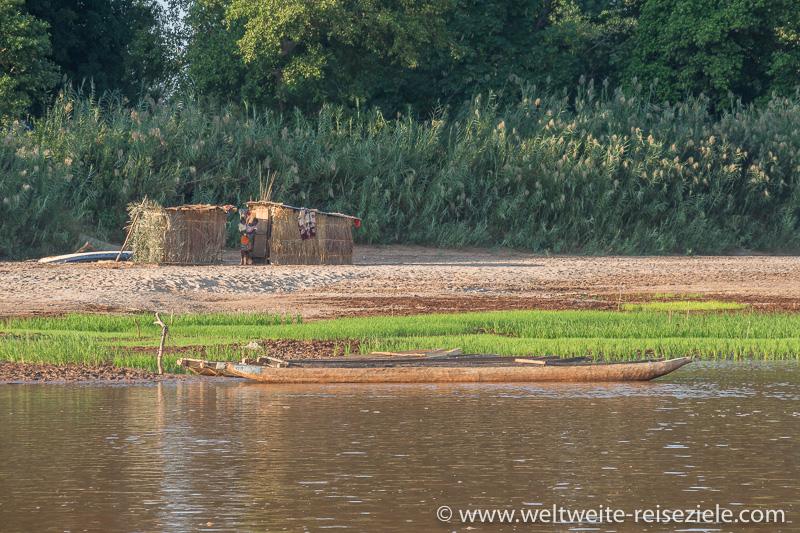 Grünes Reisfeld mit Piroge am Fluss Manambolo