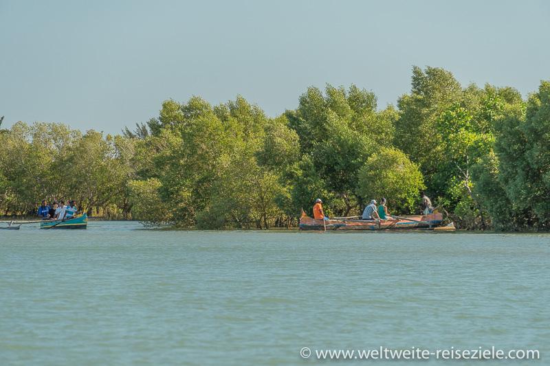 Ausflugsfahrt für Touristen zu den Mangroven, Morondava