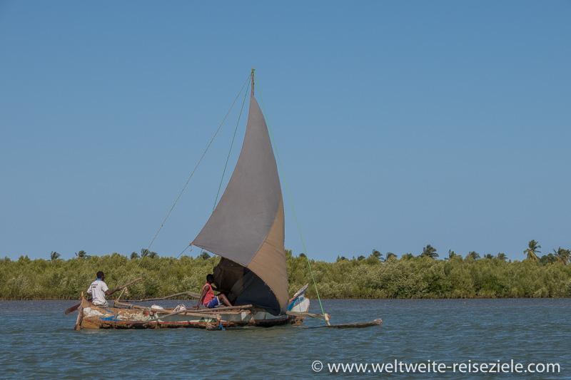 Einbaum mit Ausleger, segeln vor Mangroven, Morondava