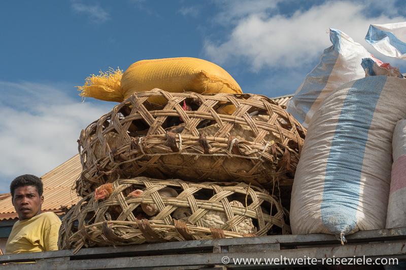 Hühner im Korb auf dem Dach eines Taxi Bus, Ivato, Madagaskar