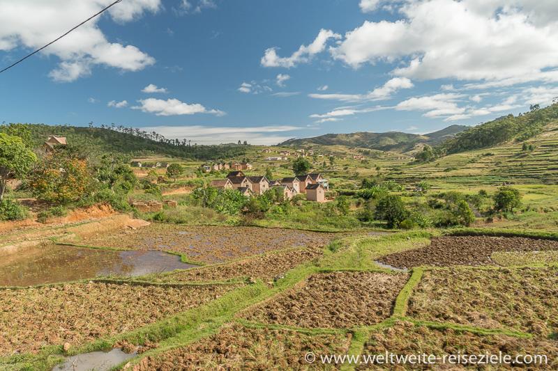 Reisfelder mit Wasser, typisches Dorf von Madagaskar und grüne Reisterrassen im Hintergrund, Strasse Ivato Ranomafana