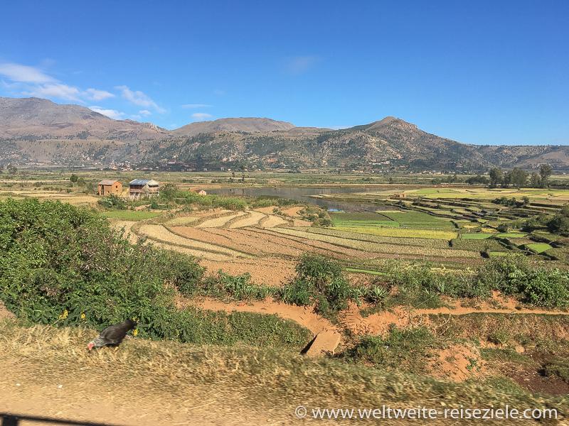 Breites Hochtal der zentralen Hochebene von Madagaskar mit Reisterrassen und Bergen im Hintergrund