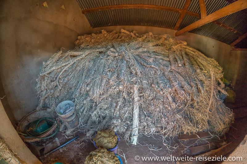 Pflanzenfasern für die Papierherstellung, Ambalavao