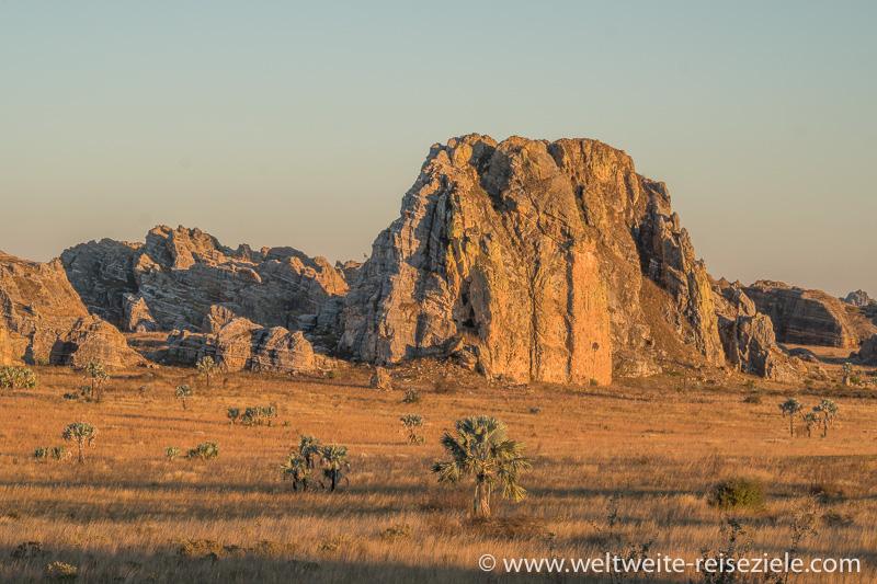 Grosse Felsen in Graslandschaft mit Palmen im orangen Licht vor dem Sonnenuntergang, Isalo