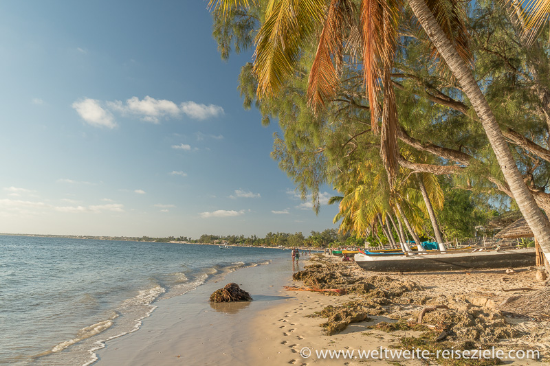 Palmen und Pirogen der Einheimischen am Strand von Mangily