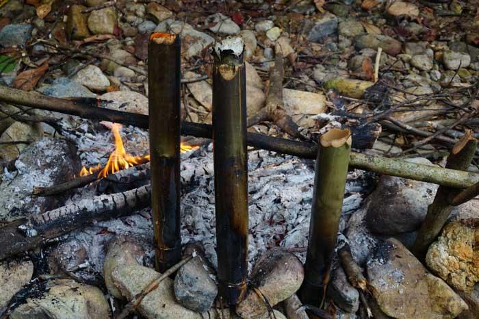 """Feuerstelle mit Bambus """"Kochgeschirr"""" im Dschungel, Malaysia"""