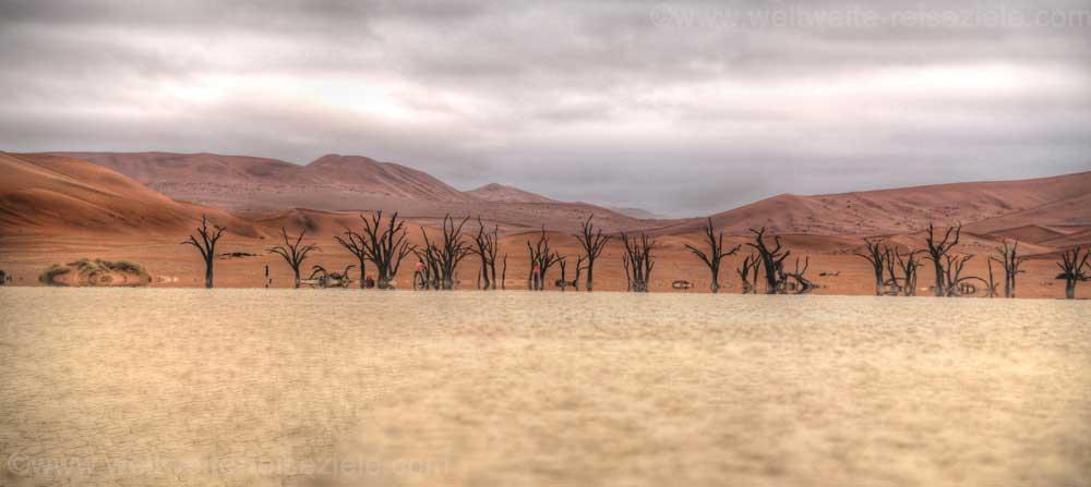 Tote Bäume mit Fatamorgana am Deadvlei