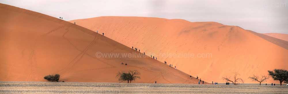Düne 45 mit vielen Leute die auf die Düne wandern, Sossusvlei