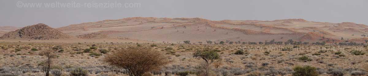 Hellere Sanddünen weiter nördlich von Sossusvlei, auf dem Weg nach Solitaire