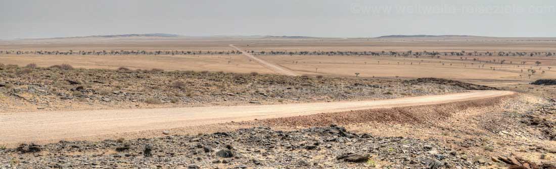 Strasse durch die Namib nach dem Kuiseb Canyon in Richtung Walfischbay