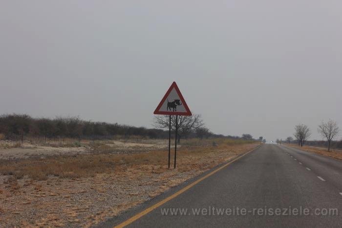 Strassenschild, Vorsicht Walzenschweine, Namibia