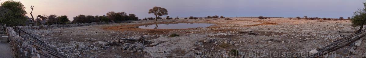 Panoramafoto, Wasserloch von Okaukuejo am frühen Morgen