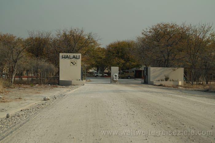 Eingang, Halali Camp, Etosha, Namibia