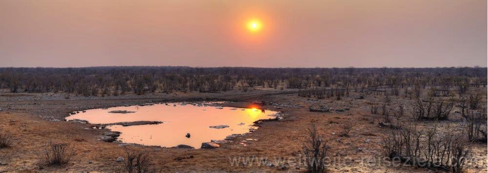 Sonnenuntergang am Halali Wasserloch