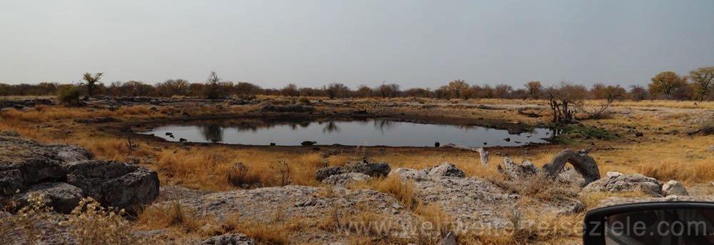 Nuamses Wasserloch, Etosha, Namibia
