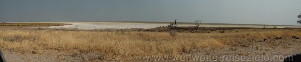Etosha Pfanne vom Südosten aus gesehen