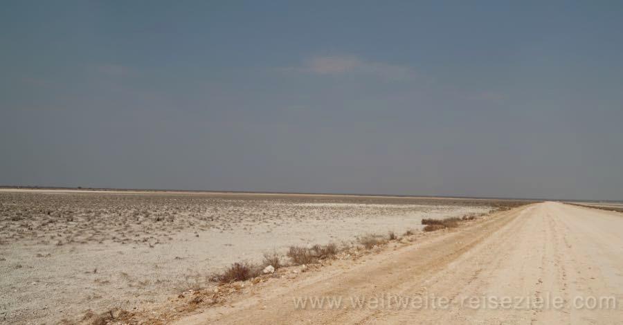 Strasse durch die Fischers Pan im Osten des Nationalpark Etoscha