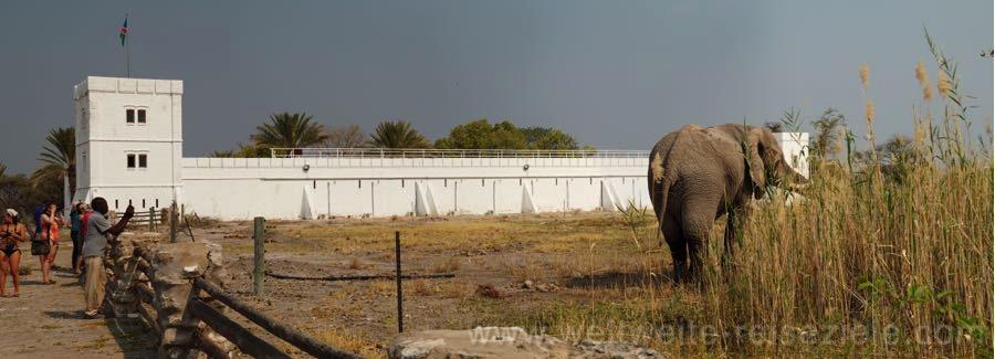 Grosser Elefantenbulle beim Wasserloch King Nahale im Namutoni Camp