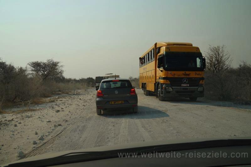 Viele Autos, Nähe Klein Namutoni Wasserloch nach Leopard Sichtung, Etosha Nationalpark