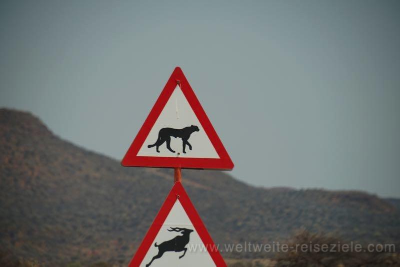 Strassenschild, Vorsicht Geparden, auf dem Weg zur Okonjima Lodge, Namibia