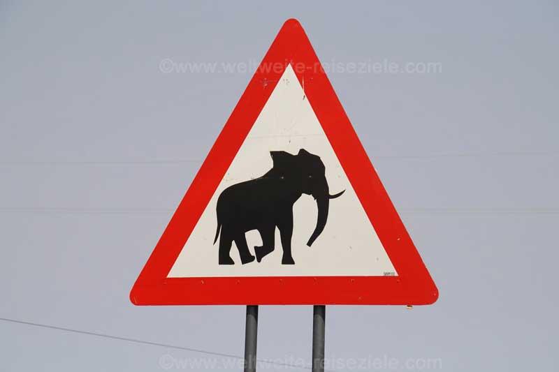 Vorsicht Elefanten