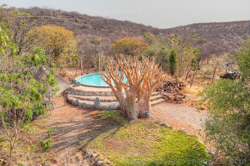 Pool, Foto von der Aussichtsplattform der Otjitotongwe Geparden Guestfarm