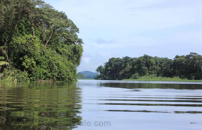 Der Amazonas ist ein interessantes Reiseziel in Brasilien